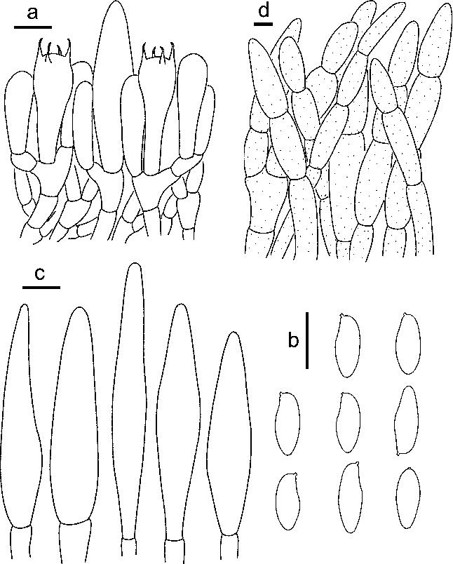 figure 113