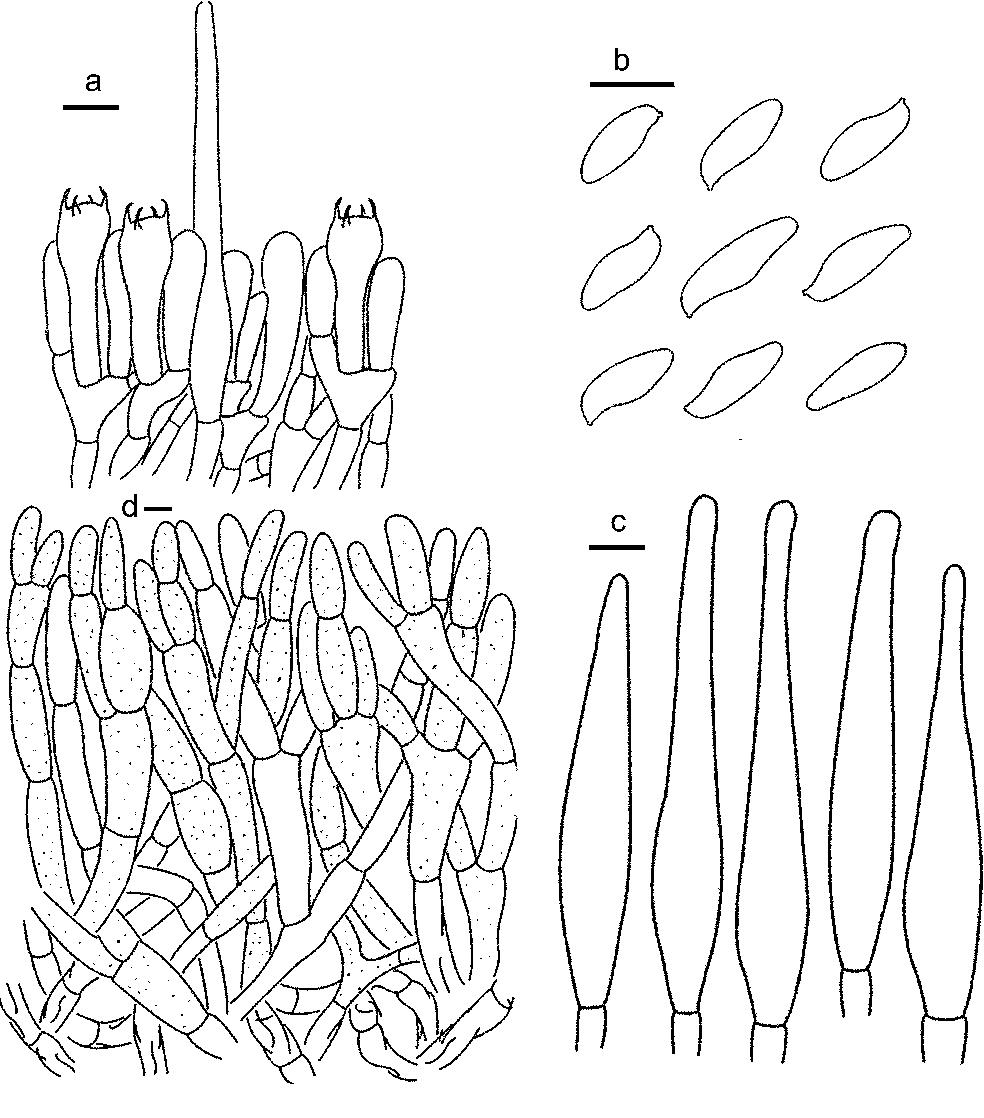 figure 120