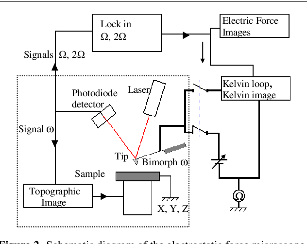 Figure 2. Schematic diagram of the electrostatic force microscope generally based on a commercial AFM (inside dotted box). Two lock-ins allow the detection of the and 2 signals and a closed loop brings the surface voltage.