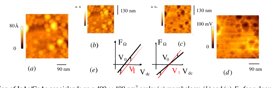 Figure 3. Observation of InAs/GaAs nanoislands on a 400 × 400 nm2 scale: (a) morphology, (b) and (c) F for a dc voltage of + and −2 V respectively, (d) nano-Kelvin voltage distributions. The inversion of F contrast with the sign of Vdc is related to the slopes of dC/dz on the plane and on the bump areas, as seen on graph (e). If only voltage differences are present, no contrast inversion occurs.