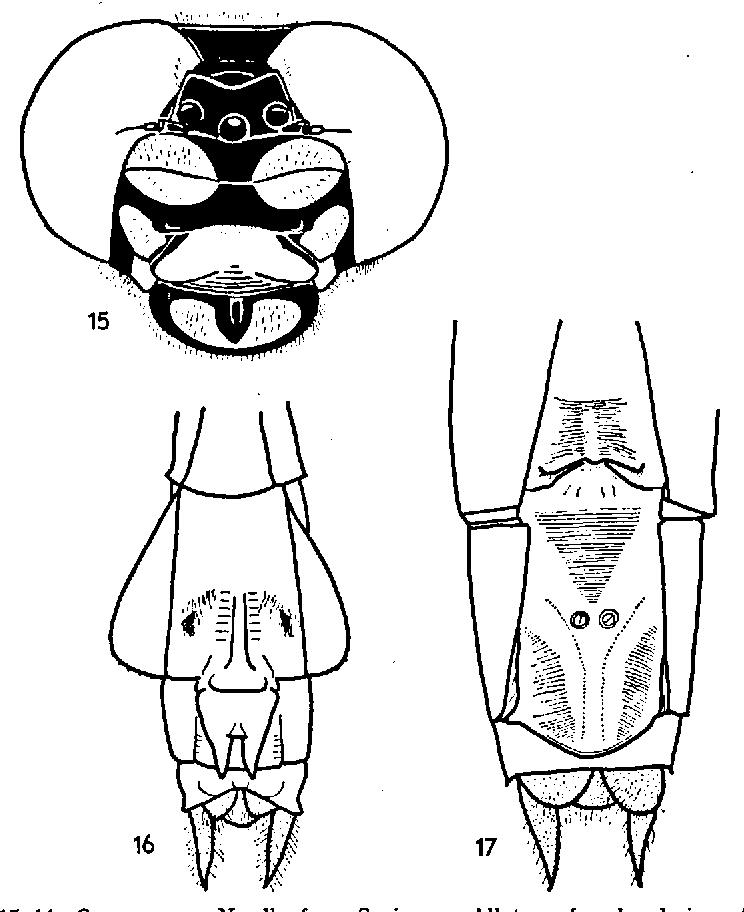 figure 15—16