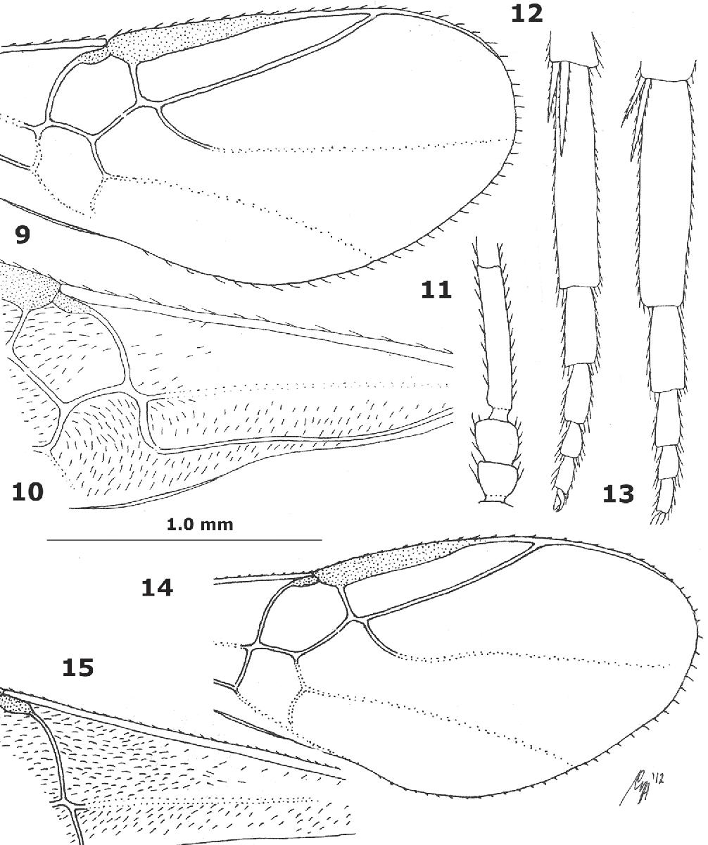 figure 9–15
