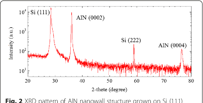 Figure 2 from AlN Nanowall Structures Grown on Si (111