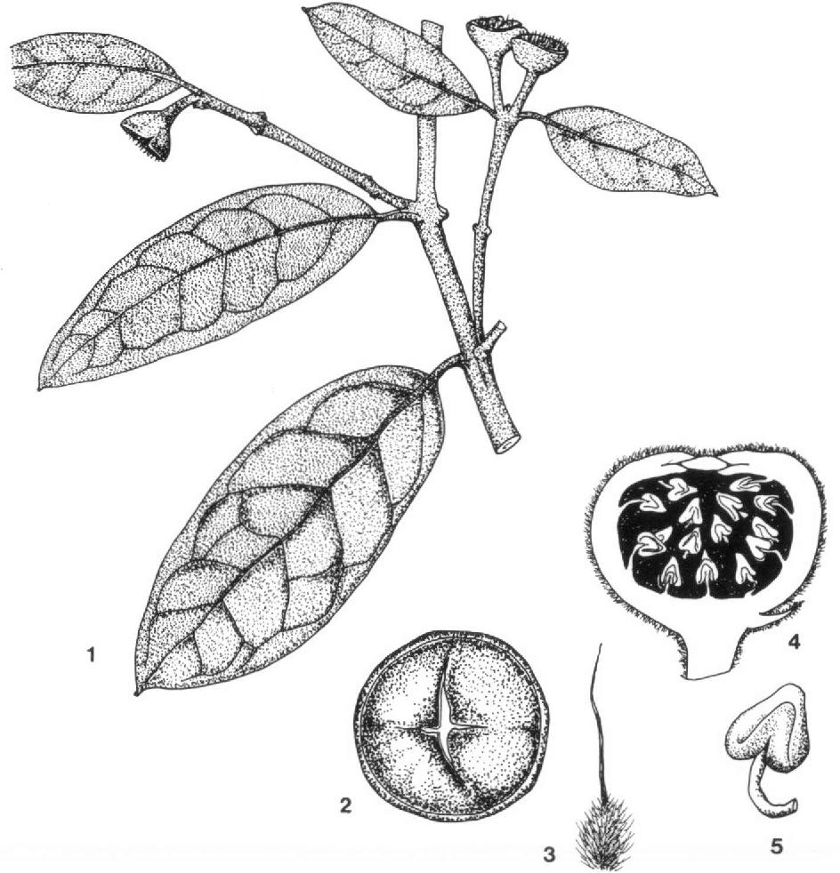 figure 1—5