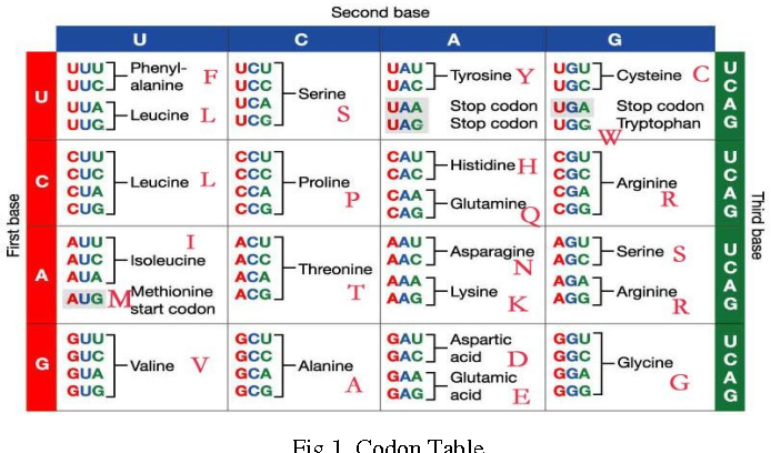 Figure 1 From Understanding Of Genetic Code Degeneracy And New Way Classifying Protein Family A Mathematical Approach Semantic Scholar