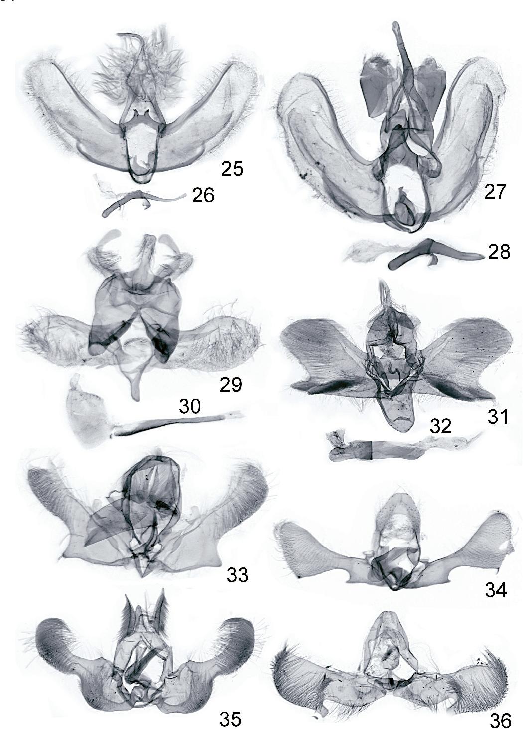 figure 25-36