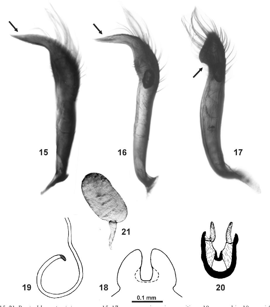 figure 15–21