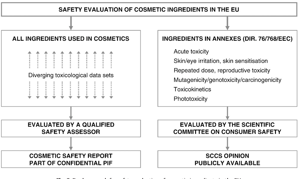 Human health safety evaluation of cosmetics in the EU: a
