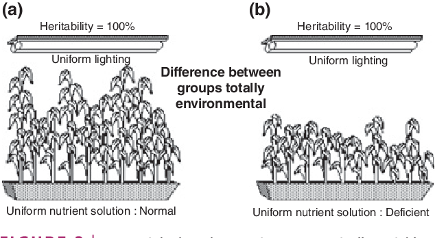 FIGURE 2 | Lewontin's thought experiment. Genetically variable seeds that develop in controlled environments grow to varying heights. The heritability of height in both the (a) and (b) panels is 100%, because all plants in each panel are exposed to the same environment; thus, all of the variation in height (within a panel) is accounted for by genetic variation. Despite height being 100% heritable in both the left panel and the right panel, plants' heights are still influenced by the quality of the nutrients they encounter in their environments; mature plants that develop in a deficient nutrient solution (b) are shorter, on average, than are mature plants that develop in a normal nutrient solution (a). Source: http://www.nyu.edu/ gsas/dept/philo/faculty/block/papers/plants.gif) and Lewontin.9