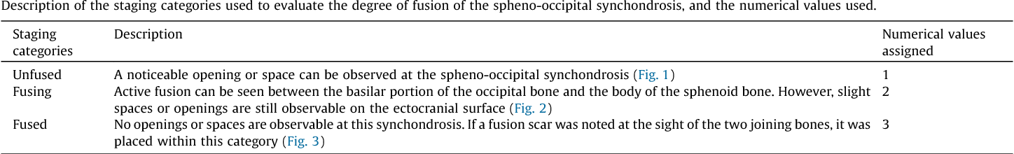 Figure 3 From Spheno Occipital Synchondrosis Examining The Degree Of Fusion In A South African Black Skeletal Sample Semantic Scholar It showed the characteristic structure with a central zone of equally distributed. figure 3 from spheno occipital