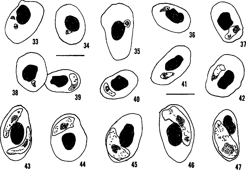 figure 33-47