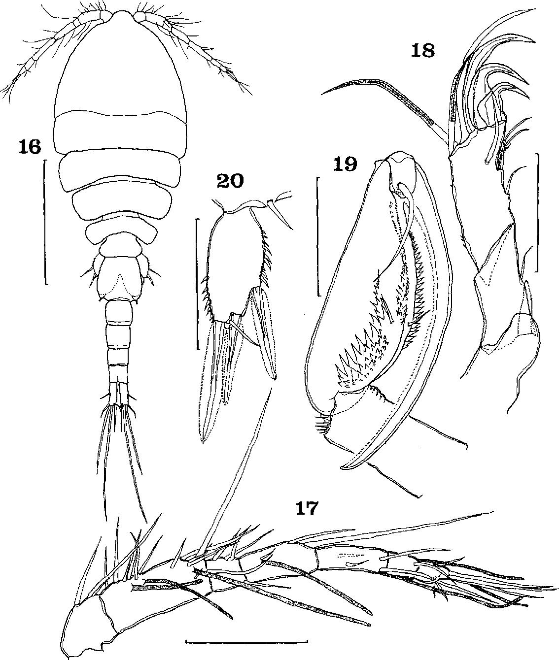 figure 16-20