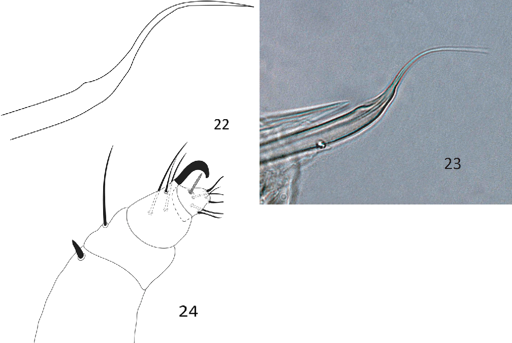figure 22–24