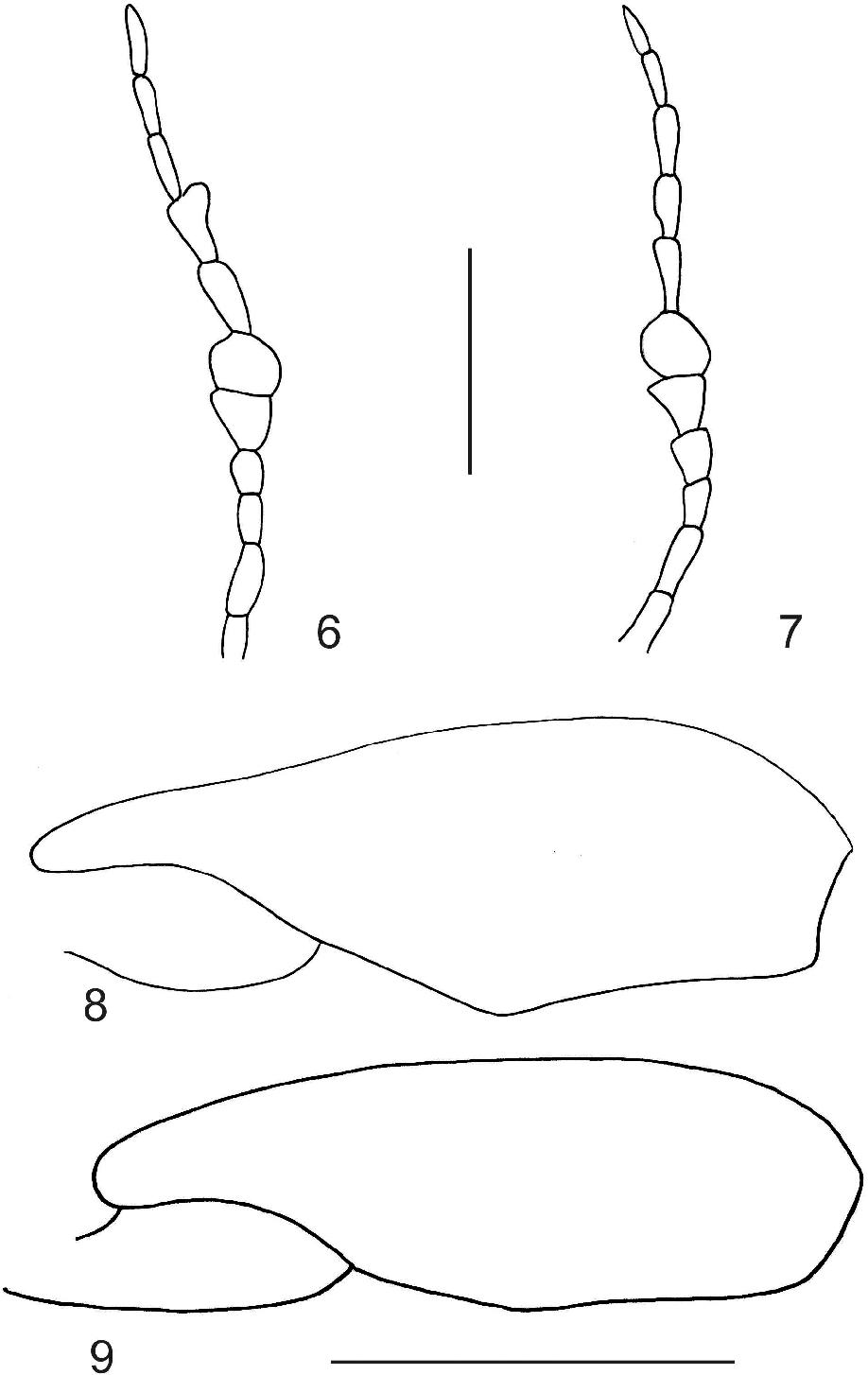 figure 6–9