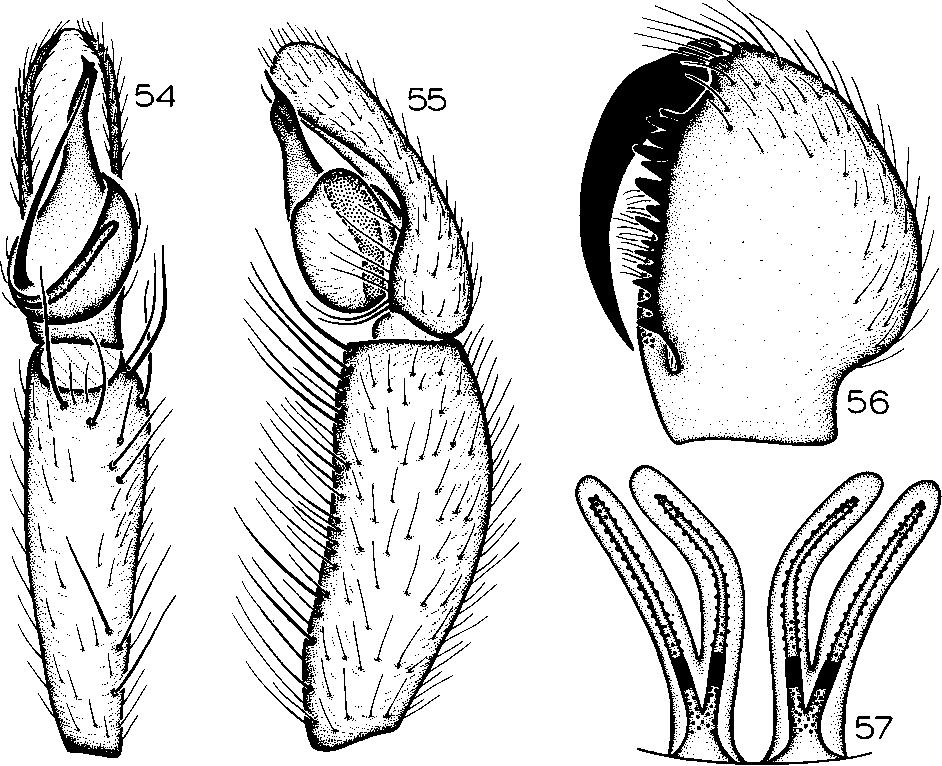 figure 35-50