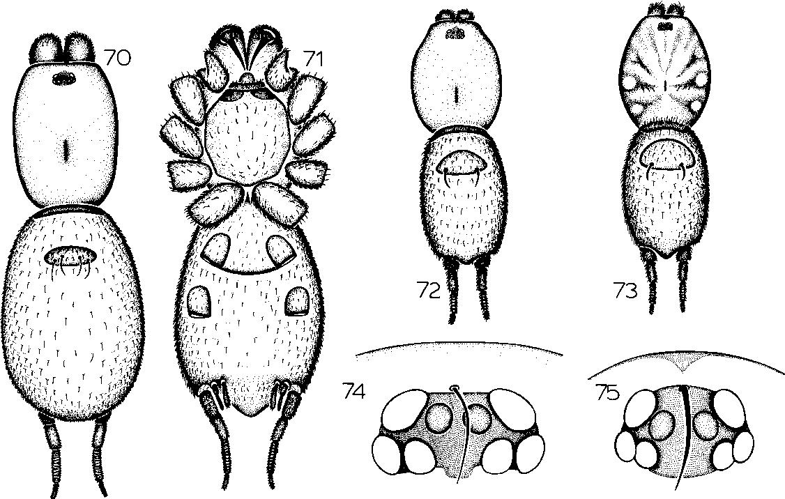 figure 51-57