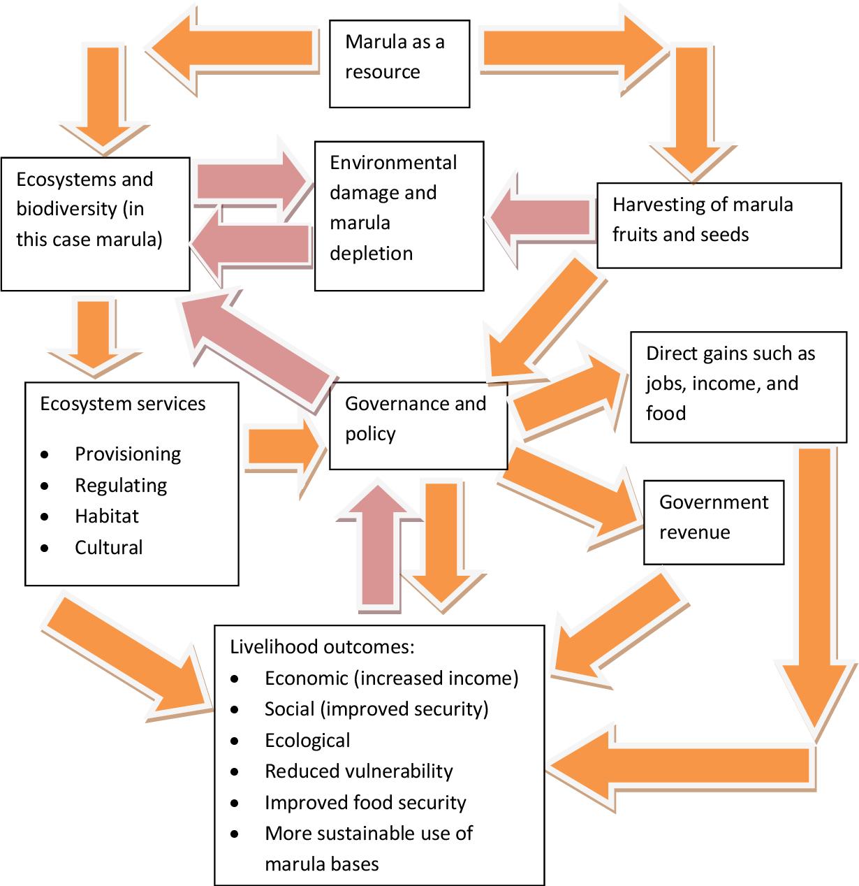 PDF] Enviromental and socio-economic sustainability of