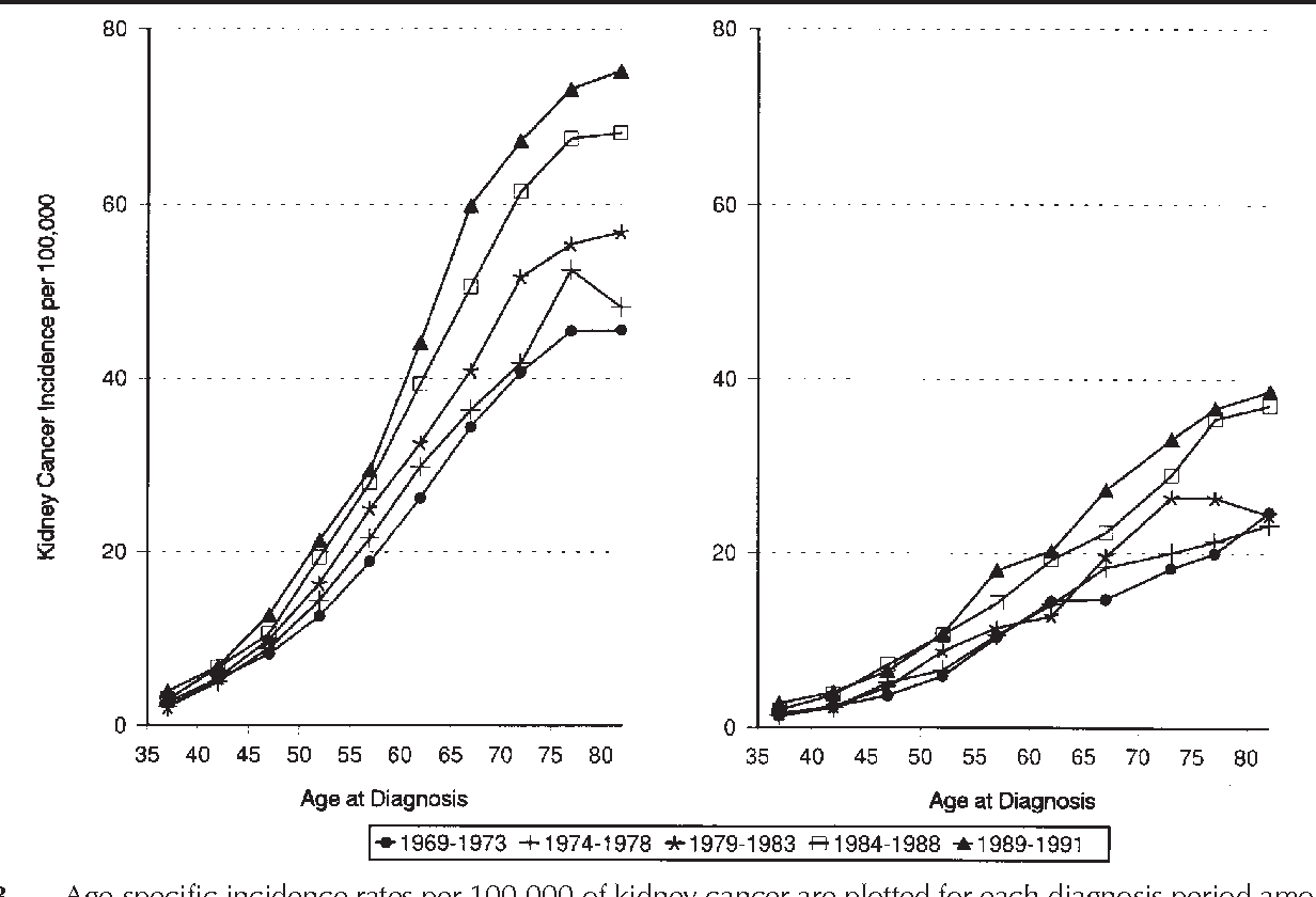 Figure 3 From Kidney Cancer In Canada The Rapidly Increasing Incidence Of Adenocarcinoma In Adults And Seniors Semantic Scholar