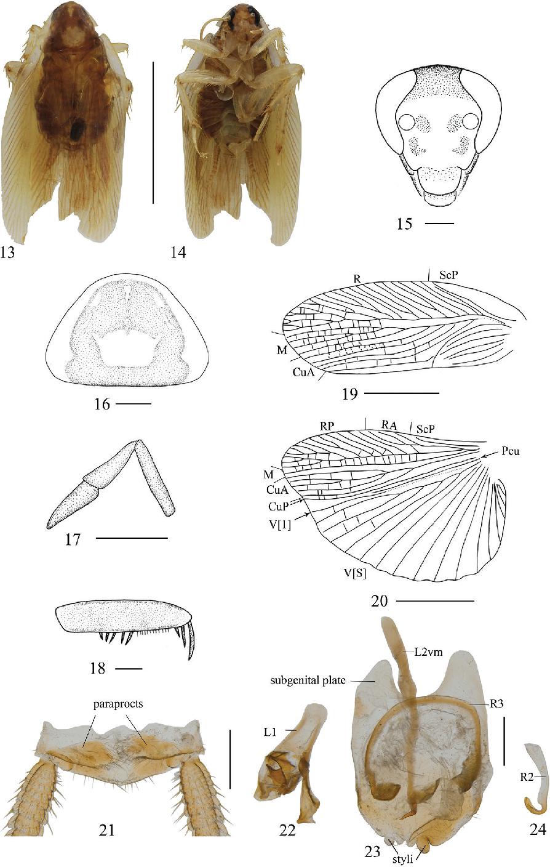 figure 13–24