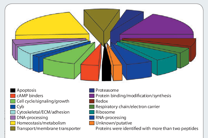 Center for Computational Mass Spectrometry | Semantic Scholar
