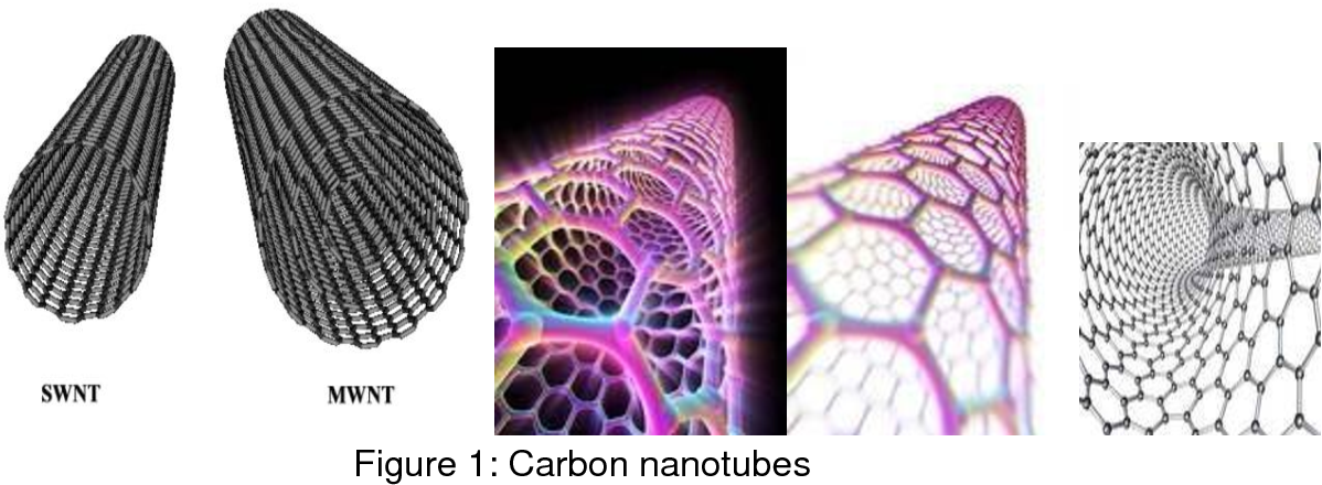 Figure 1 from Carbon Nanotubes in Pharmaceutical