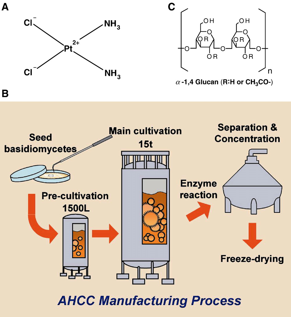 The influence of active hexose correlated compound (AHCC) on