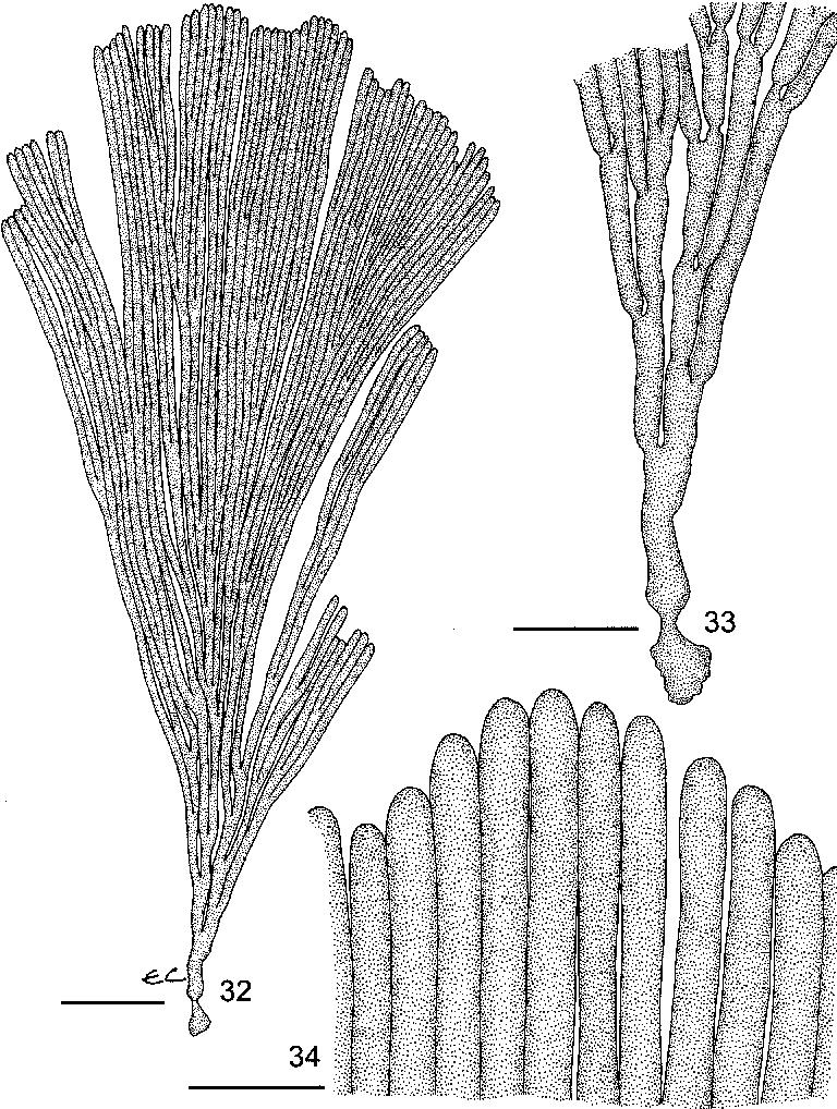 figure 32–34