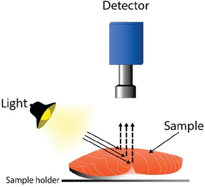 Figure 1 from Review: computer vision applied to the