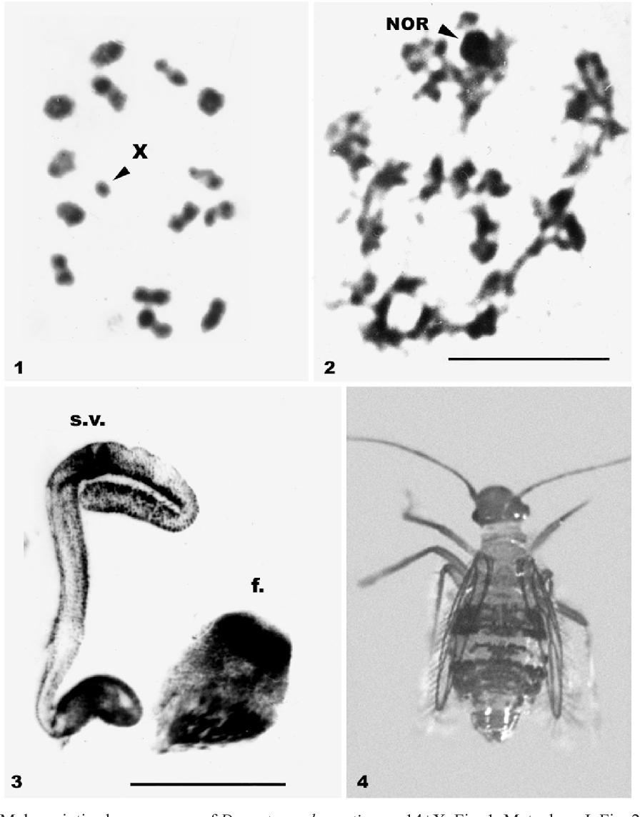 figure 1-4