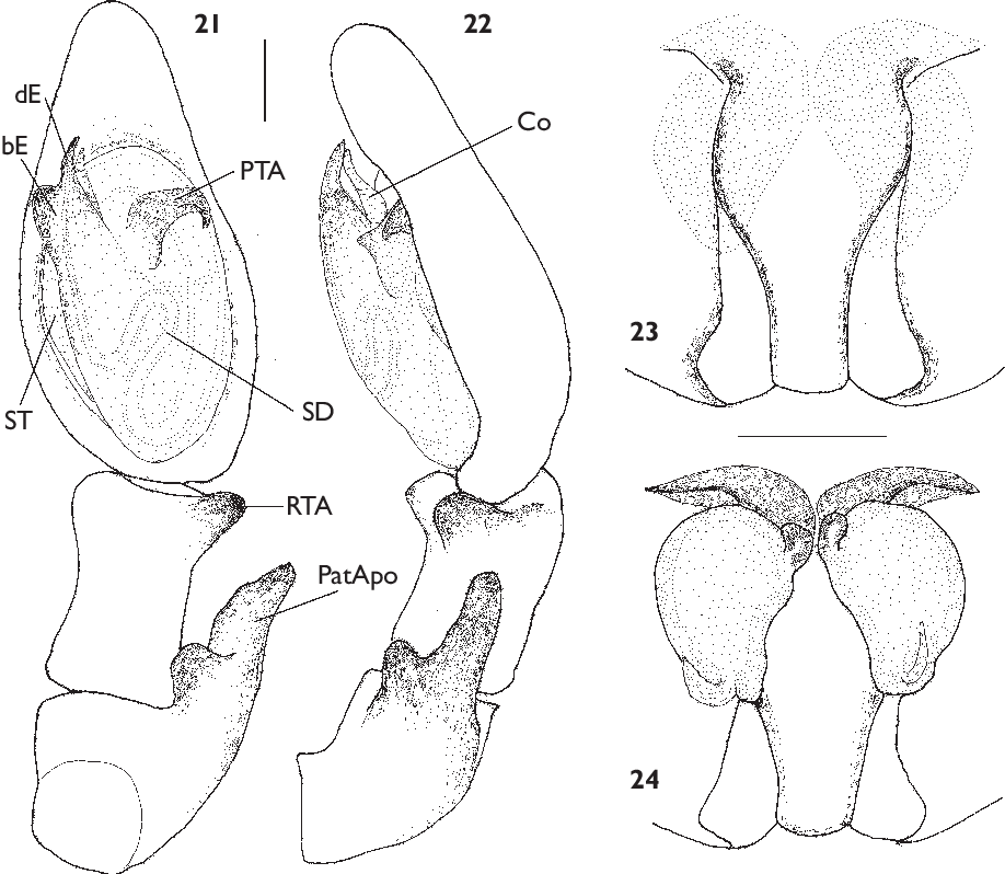 figure 21-24