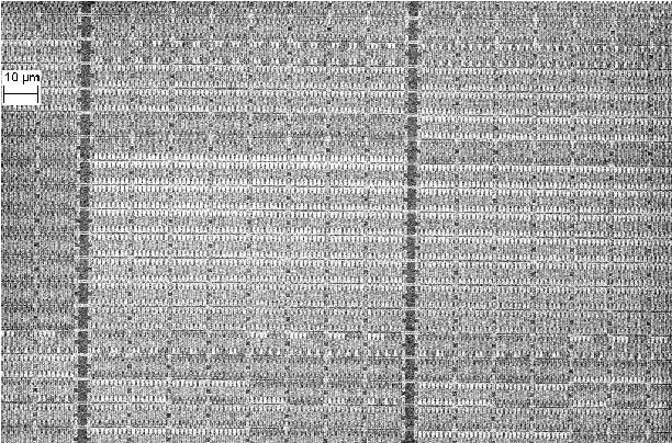 Figure 4 from Reverse Engineering Flash EEPROM Memories