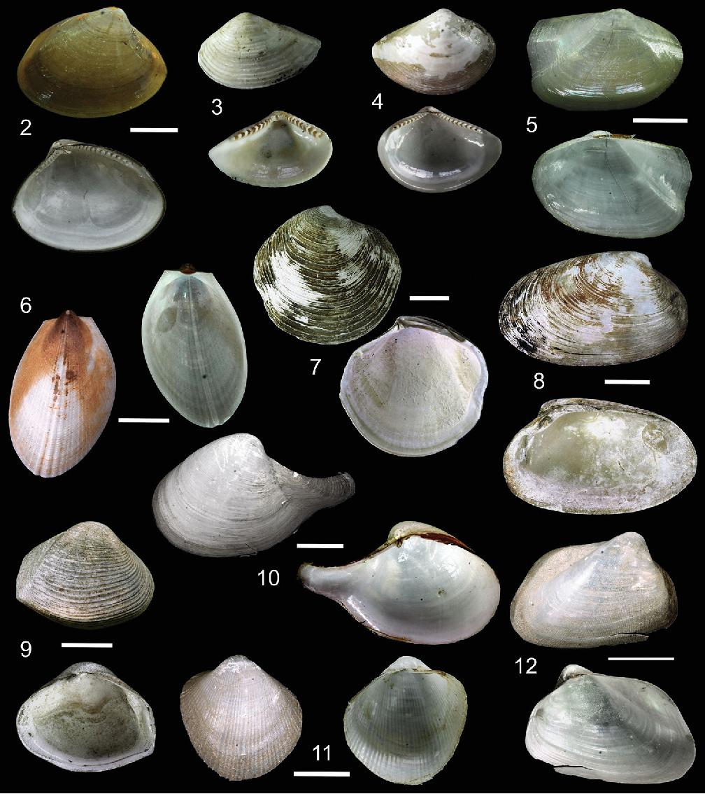 figure 2–12
