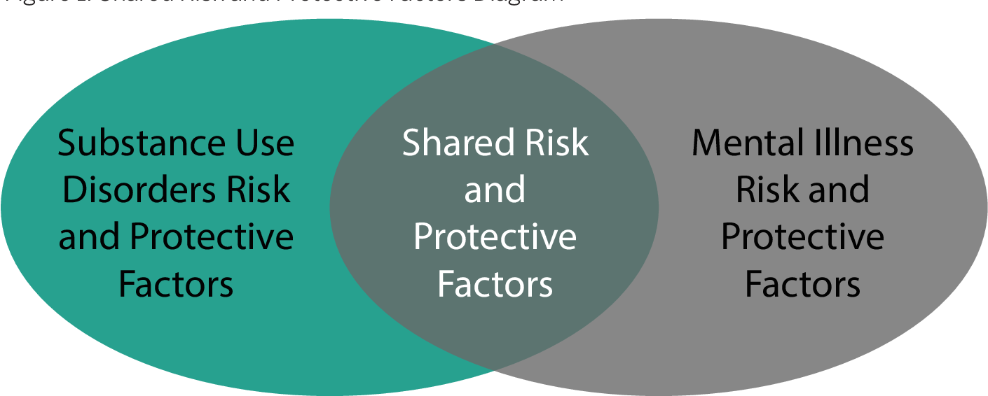 PDF] Mental Health, Substance Misuse, and Suicide: Shared Risk and Protective  Factors | Semantic Scholar