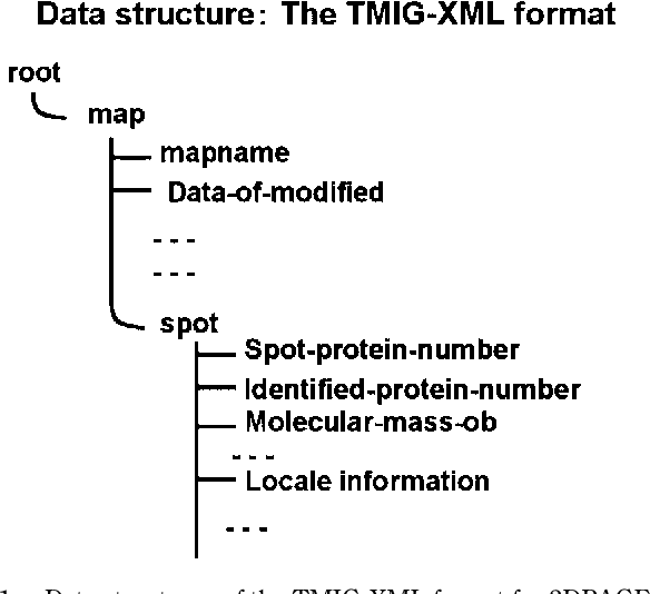 Fig. 1. Data structures of the TMIG-XML format for 2DPAGE.