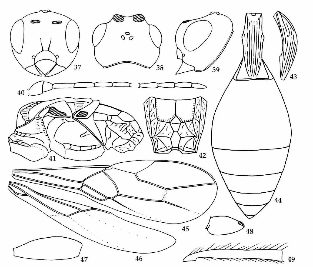 figure 37-49