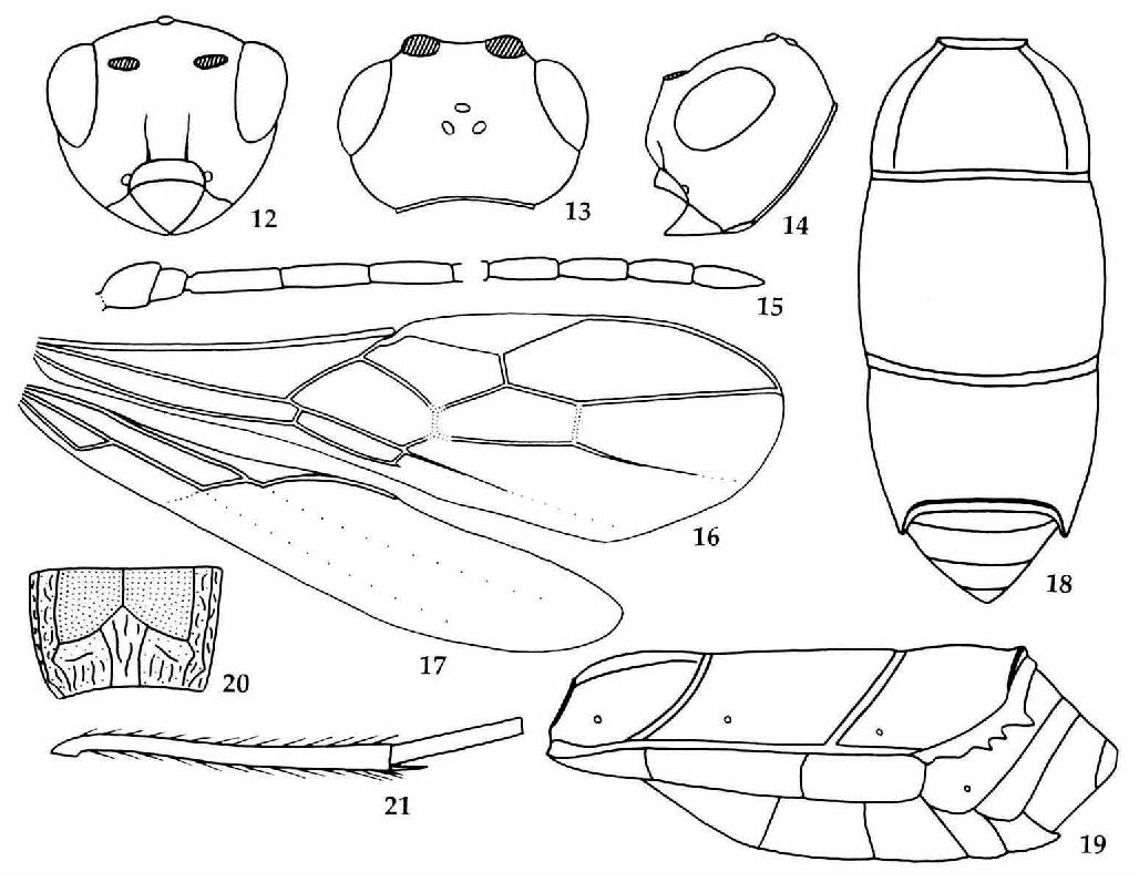 figure 12-21