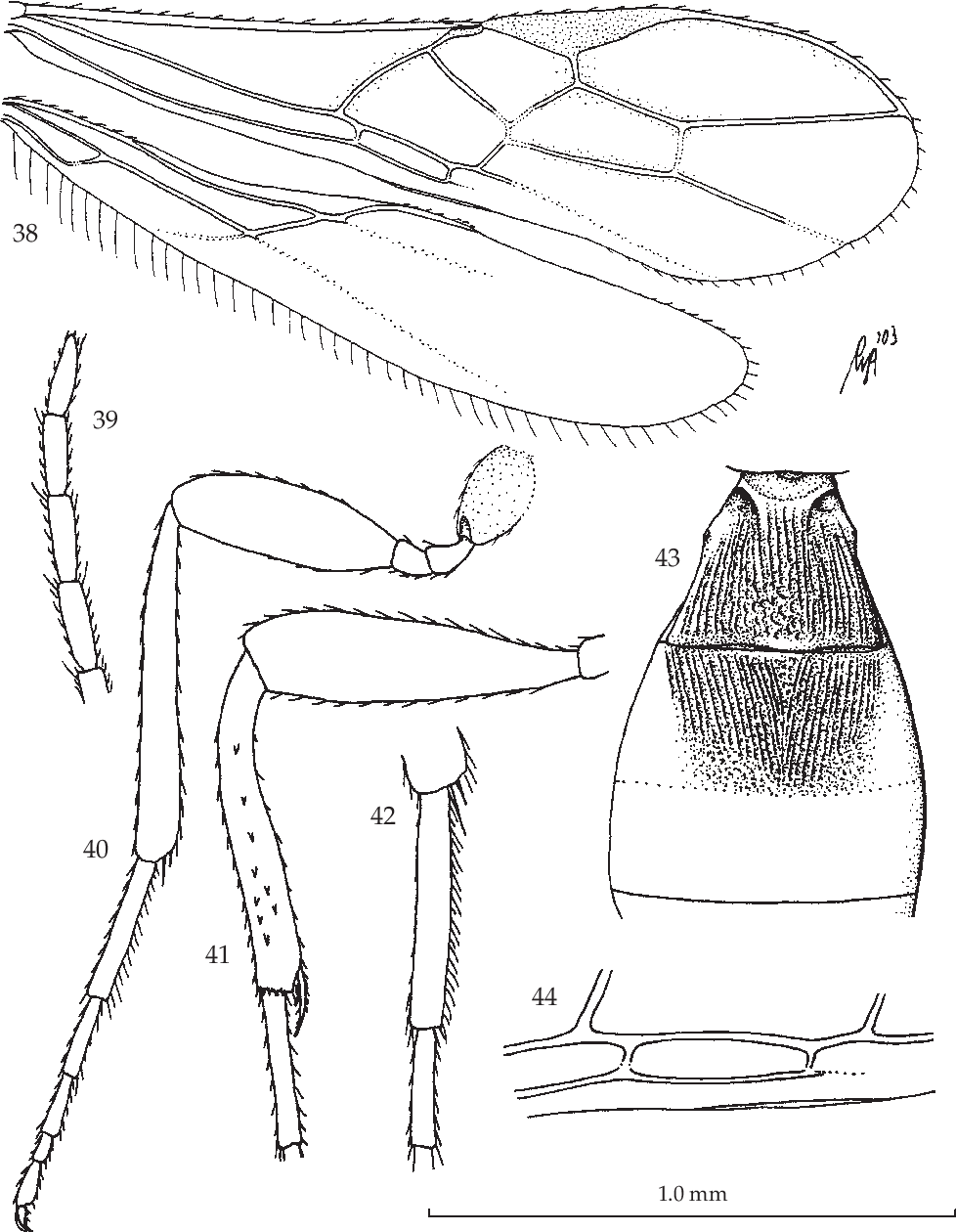 figure 38-44