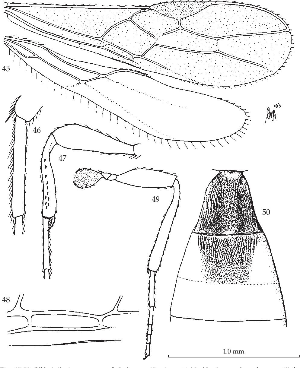 figure 45-50
