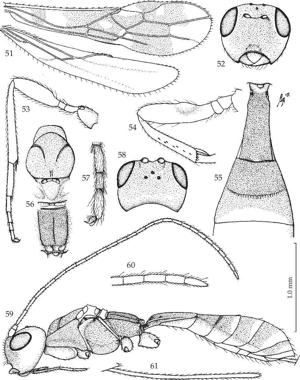 figure 51-61