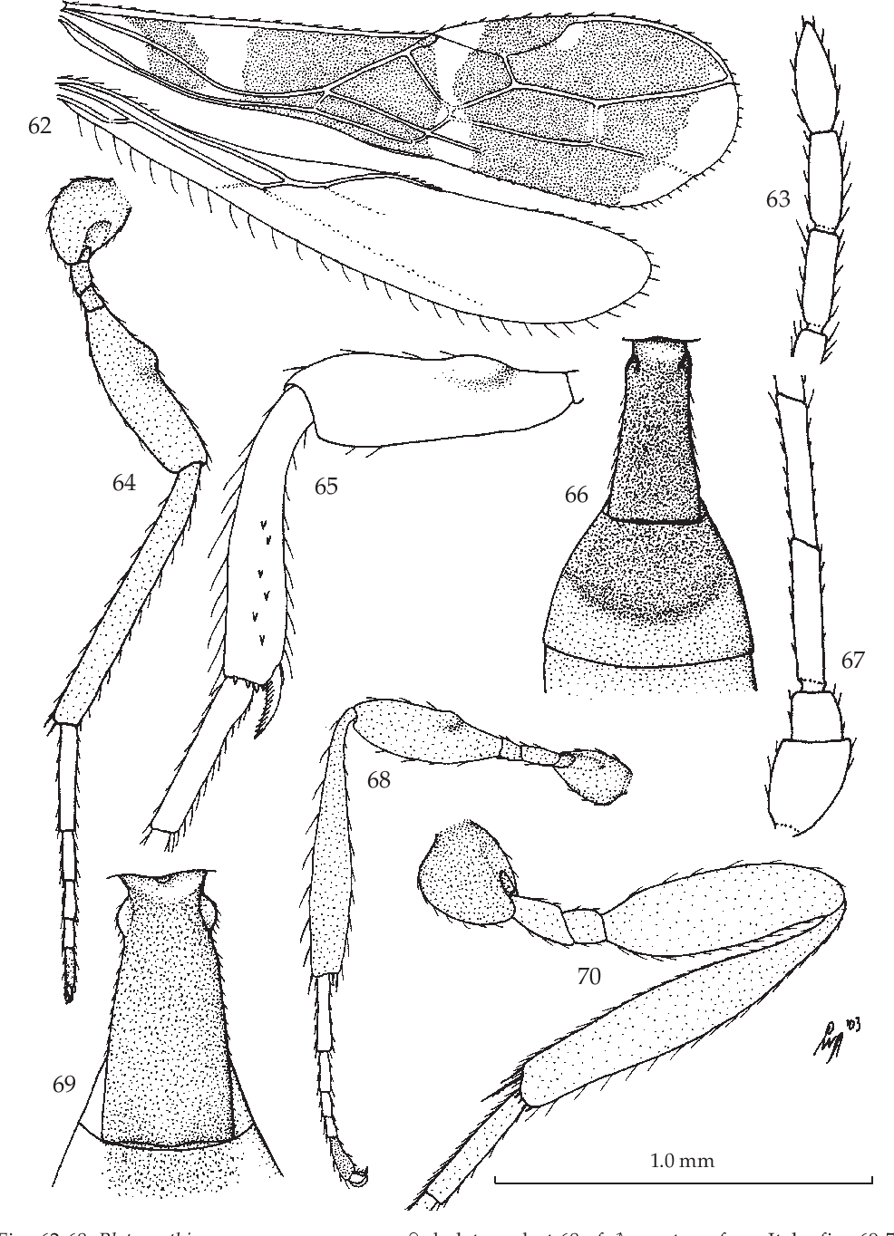 figure 62-68