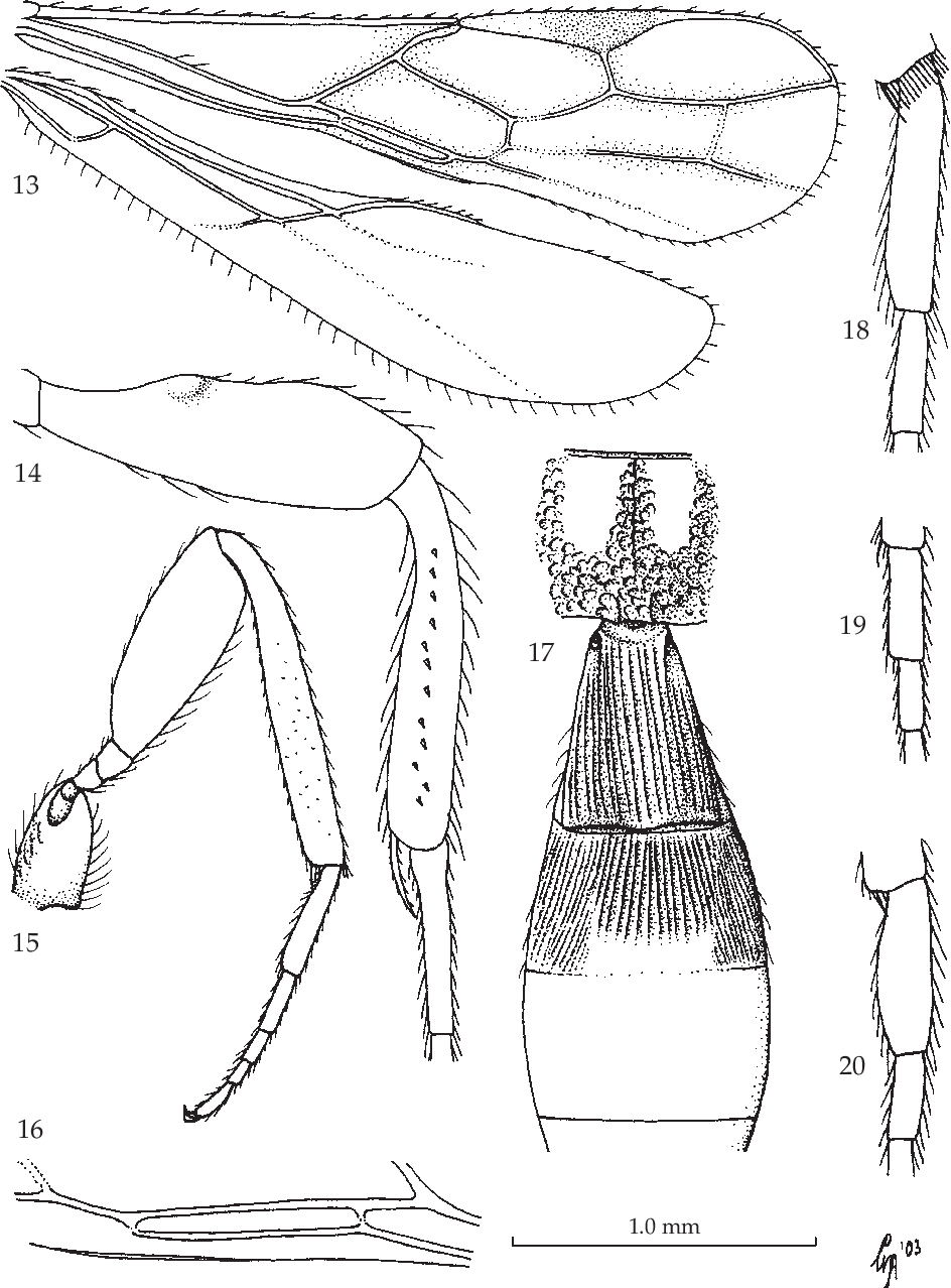 figure 13-18