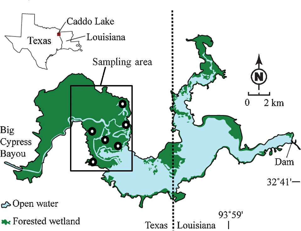Figure 1 from Mercury speciation and biomagnification in the ... on pontotoc lake map, woodward lake map, tawakoni lake map, seminole canyon map, mead lake map, degray lake map, wyandot lake map, mountain creek lake map, pedernales state park satilite map, caney creek reservoir map, el reno lake map, woods lake map, weatherford lake map, livingston lake map, lake fork map, murray lake map, jim chapman lake map, coleman lake map, marshall tx city map, brandy branch reservoir map,