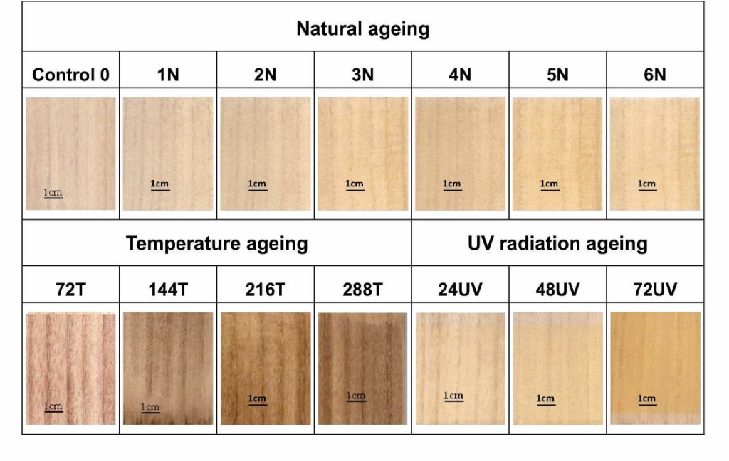 Figure 1 From Effects Of Ageing On The Color And Surface
