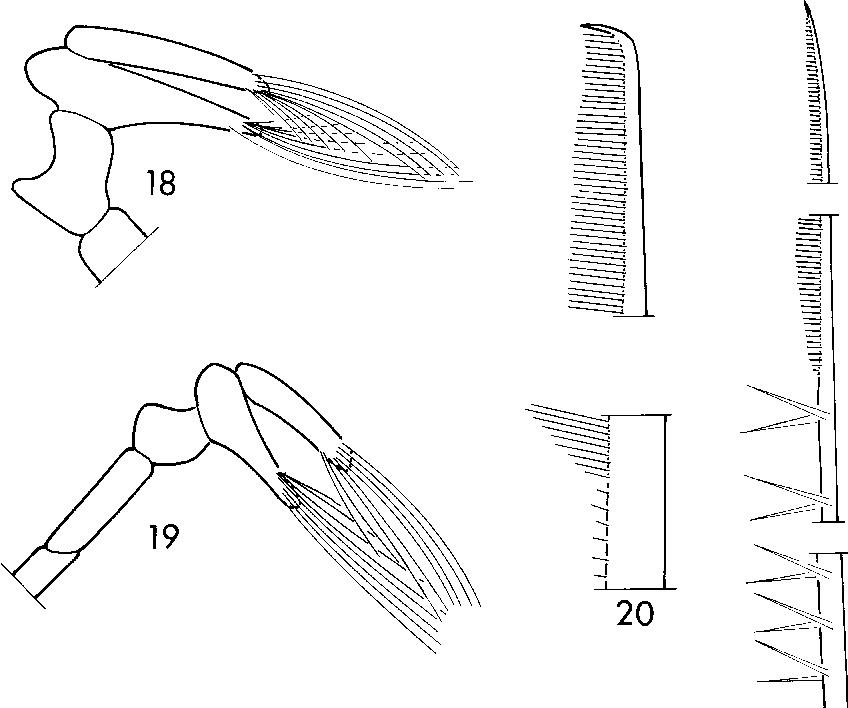 figure 18–21
