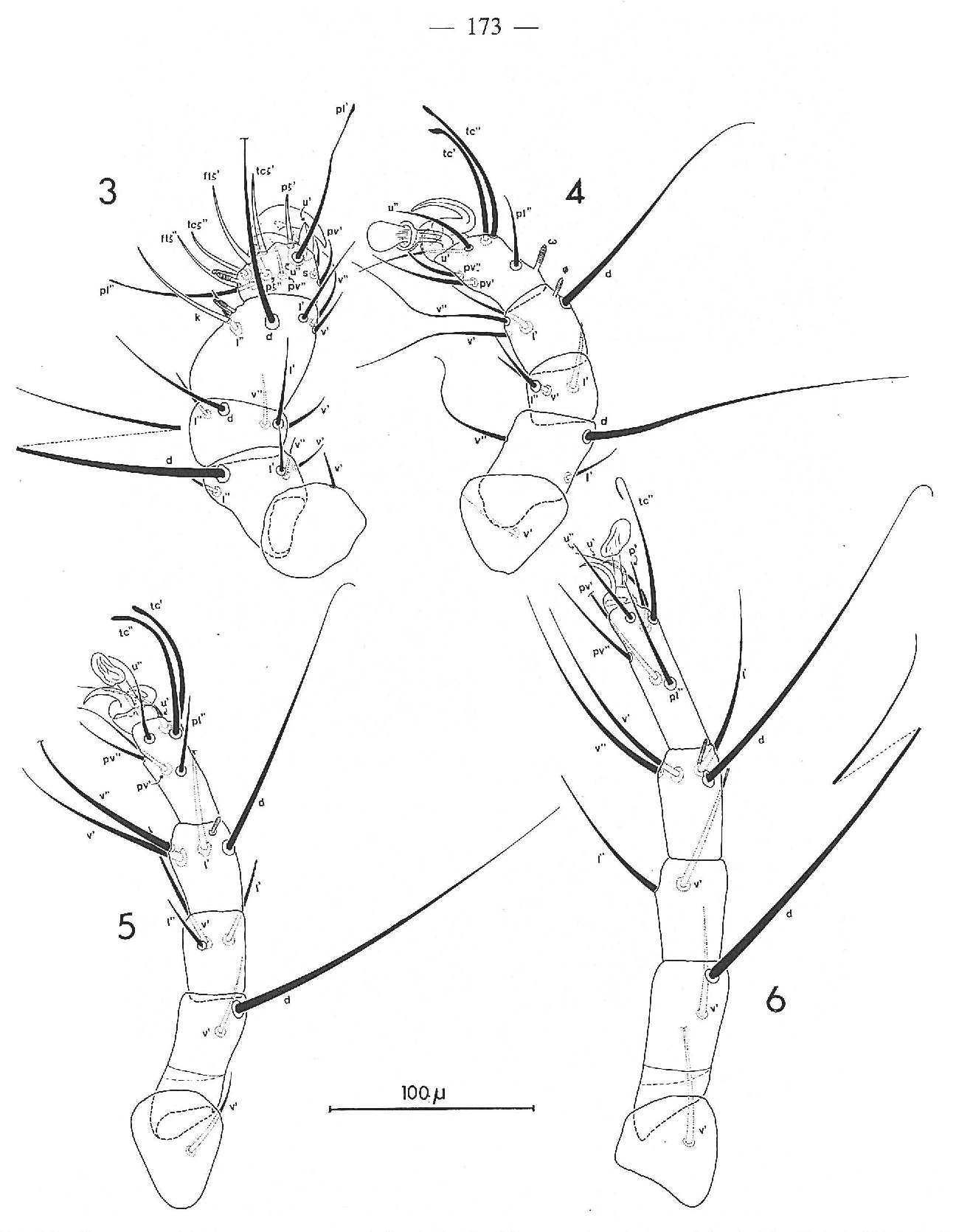figure 3-6