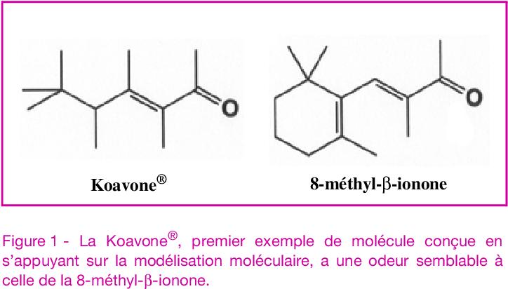 De La Molecule A L Odeur Les Bases Moleculaires Des Premieres Etapes De L Olfaction Semantic Scholar