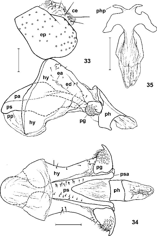 figure 33–35