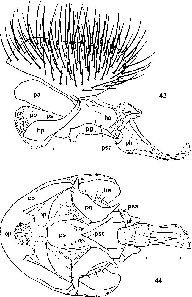 figure 43–44
