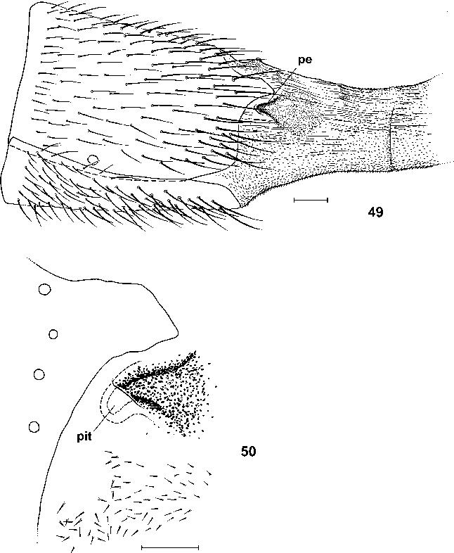 figure 49–50