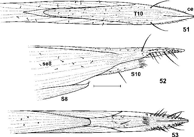 figure 51–53